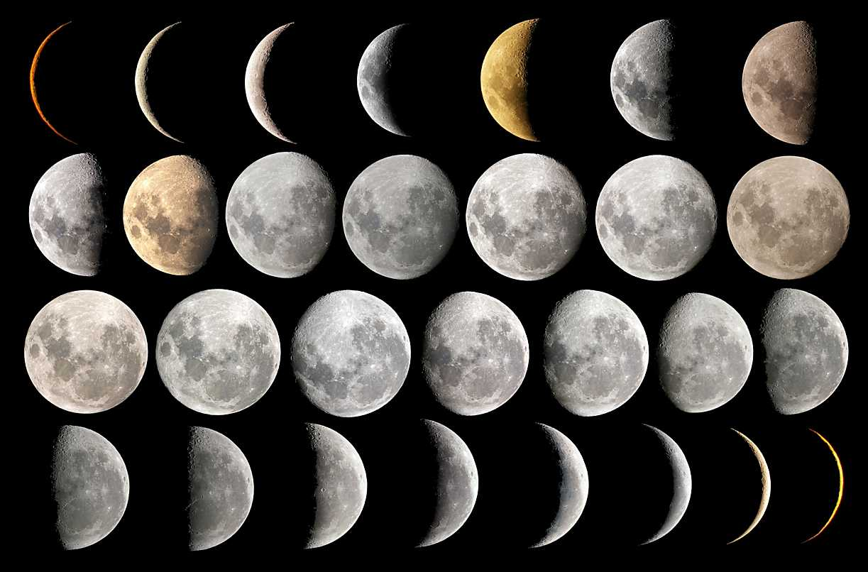 This is why we need to look at the moon laba for Moon phases and fishing